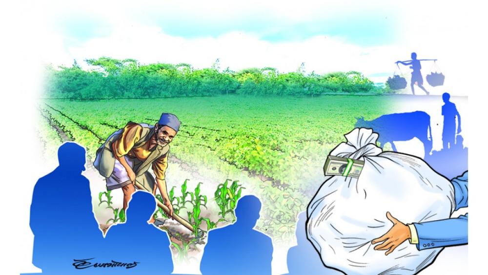 कसको हितमा कृषिमा वैदेशिक लगानी ?